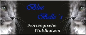 Banner Blue Belles